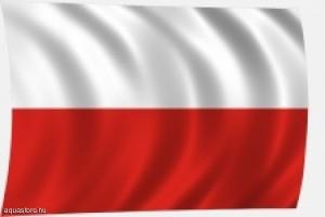 lengyel_flag